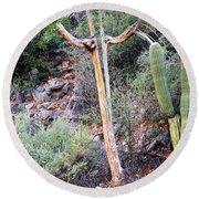 Saguaro Skeleton Round Beach Towel