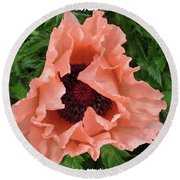 Round Beach Towel featuring the photograph Salmon Colored Poppy by Barbara Griffin