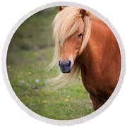Salon Perfect Pony Round Beach Towel