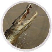Salt Water Crocodile Australia Round Beach Towel by Bob Christopher