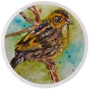 Saltmarsh Sparrow Round Beach Towel