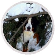 Sam And His Fort Round Beach Towel by Patti Whitten