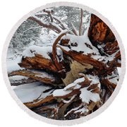 Round Beach Towel featuring the photograph San Jacinto Fallen Tree by Kyle Hanson