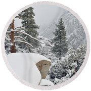 Round Beach Towel featuring the photograph San Jacinto Winter Wilderness by Kyle Hanson