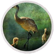 Sandhill And Chicks Round Beach Towel