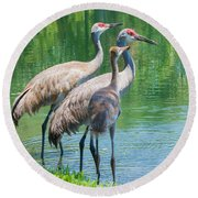 Mom Look What I Caught Round Beach Towel by Susan Molnar