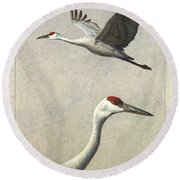 Sandhill Cranes Round Beach Towel by James W Johnson