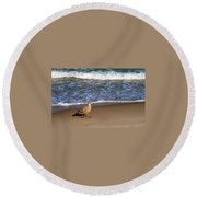 Sandpiper At Ortley Beach, Nj Round Beach Towel