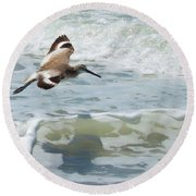 Sandpiper Flight Round Beach Towel by Susan Molnar