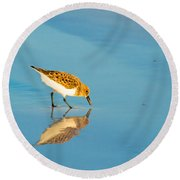 Sandpiper Mirror Round Beach Towel by Susan Molnar