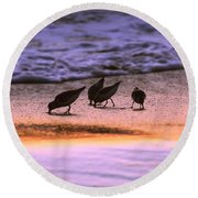 Sandpiper Morning Round Beach Towel