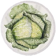 Savoy Cabbage  Round Beach Towel by Alison Cooper