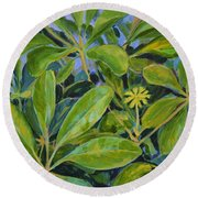 Schefflera-right View Round Beach Towel