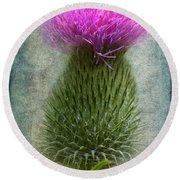 Scotch Thistle Round Beach Towel