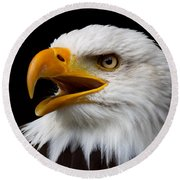 Screaming Bald Eagle Round Beach Towel