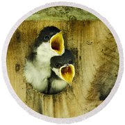 Screaming Hungry Round Beach Towel