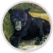 Scruffy - Black Bear - Unsigned Round Beach Towel