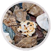 Round Beach Towel featuring the photograph Sea Debris 4 by WB Johnston