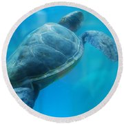Sea Turtle Under Water Round Beach Towel by DejaVu Designs