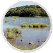 Round Beach Towel featuring the photograph Seagrass by Ed Weidman