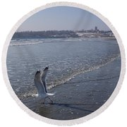 Seagull 1 Round Beach Towel by Robert Nickologianis