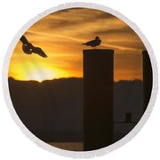 Round Beach Towel featuring the photograph Seagull In The Sunset by Chevy Fleet