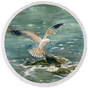 Seagull Round Beach Towel by Melly Terpening