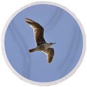 Seagull N Light  Round Beach Towel