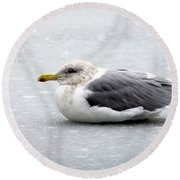 Round Beach Towel featuring the photograph Seagull On Ice by Aaron Berg