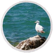Seagull On Rock Round Beach Towel