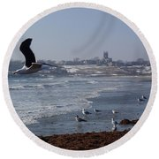 Seagull Round Beach Towel by Robert Nickologianis