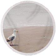 Seagull Strolling Round Beach Towel