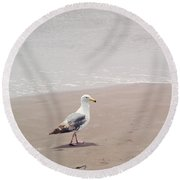 Seagull Strolling Round Beach Towel