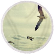 Seagulls In Flight Round Beach Towel