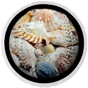 Seashells Baseball Square Round Beach Towel by Andee Design