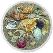Seashells Collection Round Beach Towel by Sandi OReilly