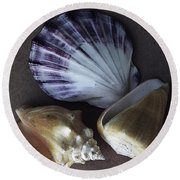 Round Beach Towel featuring the photograph Seashells Spectacular No 30 by Ben and Raisa Gertsberg