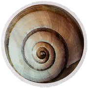 Round Beach Towel featuring the photograph Seashells Spectacular No 34 by Ben and Raisa Gertsberg