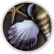 Seashells Spectacular No 37 Round Beach Towel