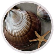 Seashells Spectacular No 38 Round Beach Towel