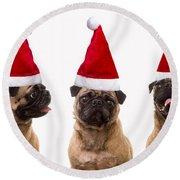 Seasons Greetings Christmas Caroling Pug Dogs Wearing Santa Claus Hats Round Beach Towel