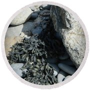 Seaweed And Rocks  Round Beach Towel