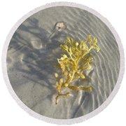Seaweed Sand Round Beach Towel