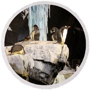Seaworld Penguins Round Beach Towel by David Nicholls