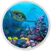 Secret Sanctuary - Hawaiian Green Sea Turtle And Reef Round Beach Towel