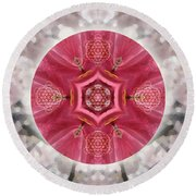 Seeds Of Transformation Round Beach Towel