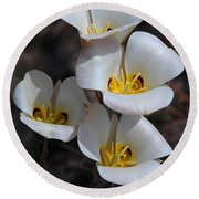 Sego Lily Round Beach Towel by Vivian Christopher