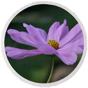 Round Beach Towel featuring the photograph Serenity by Neal Eslinger