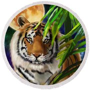 Second In The Big Cat Series - Tiger Round Beach Towel