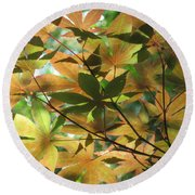 Shadows Of Maple  Round Beach Towel